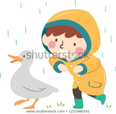 çocuk erkek bahar gibi ördek örnek Stok fotoğraf © lenm