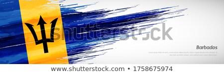 флаг Барбадос Элементы Сток-фото © nazlisart