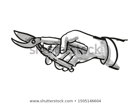 Hand holding Secateurs Garden Tool Cartoon Retro Drawing Stock photo © patrimonio