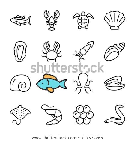Sea Fish Caviar Icon Vector Outline Illustration Stock photo © pikepicture