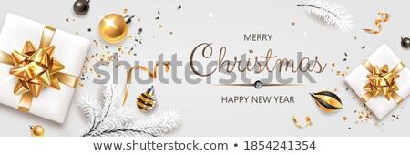 Christmas Postcard with Fir-tree and Gift Vector Stock photo © robuart