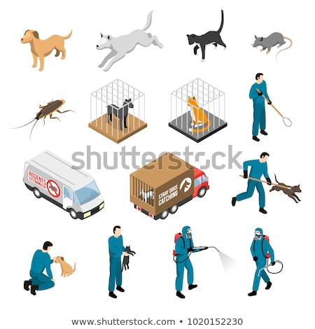 Rat isometrische icon vector teken kleur Stockfoto © pikepicture