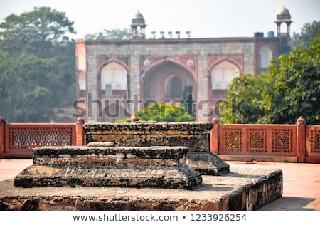 Sarcophagus. Humayun's Tomb, Delhi, India Stock photo © dmitry_rukhlenko