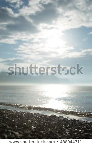 камней берег реки Дунай реке черно белые пейзаж Сток-фото © simply