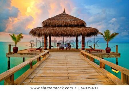Plaj kulübe akşam karanlığı yalnız güzel plaj okyanus Stok fotoğraf © ca2hill