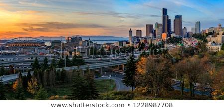 Seattle spadek dzień drzew budynków autostrady Zdjęcia stock © cboswell