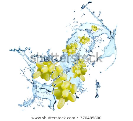 Ice cube and green grapes Stock photo © Givaga