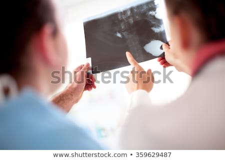 Medical doctors exchanging opinions Stock photo © photography33