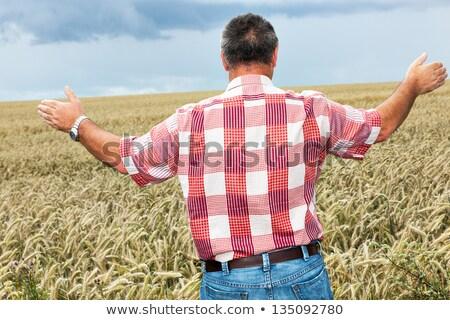 Hombre mirando cielo binoculares hierba ojos Foto stock © wavebreak_media