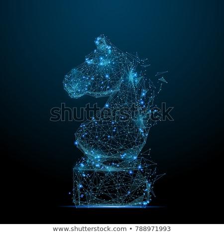 lovag · kék · szín · páncél · középkori · terv - stock fotó © nneirda