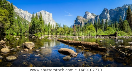 el capitan mountain in yosemite national park with creeck and gr stock photo © snyfer