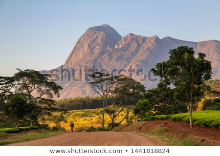 Malawi Stock photo © Vectorminator