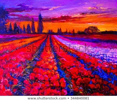granja · paisaje · grabado · ilustración · estilizado · campo - foto stock © magann