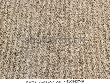 beige carpet texure as background stock photo © stevanovicigor