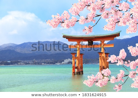 japonês · portão · laranja · preto · isolado · branco - foto stock © guffoto