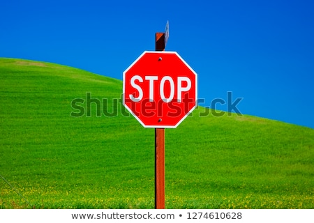 Stock photo: Red Stop Sign Green Wheat Grass Blue Skies Palouse Washington St