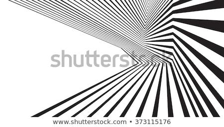 Optikai művészet feketefehér absztrakt fekete hullám Stock fotó © VectaRay