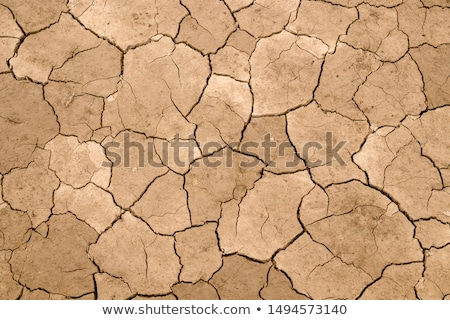 Foto stock: Rachado · terra · textura · secar · terreno