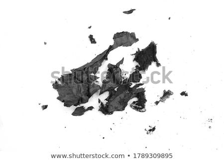 Papier as zwart wit brandend grond textuur Stockfoto © smuay