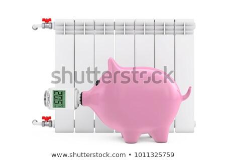 spaarvarken · radiator · hand · temperatuur · vrouw · huis - stockfoto © flipfine
