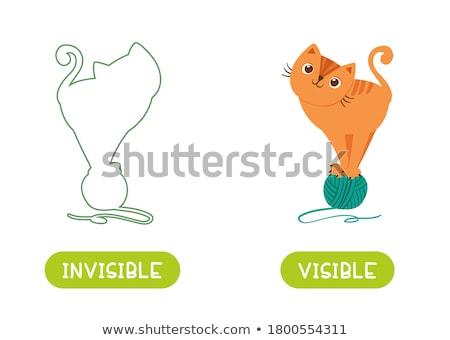 Cat and Ball - opposition Stock photo © tatiana3337