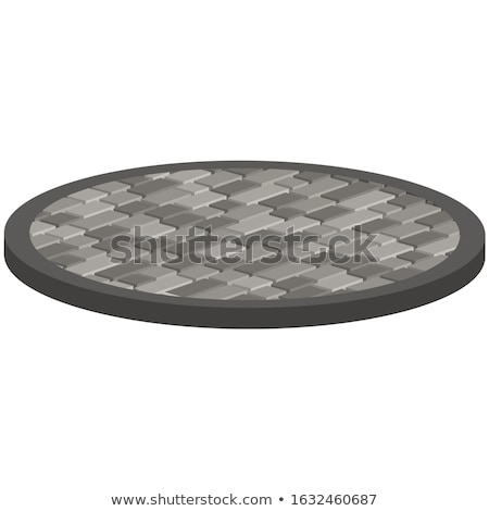 Gray Pavement Slabs in the Form of Circles. Stock photo © tashatuvango