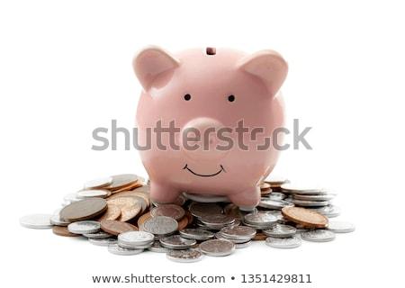 piggy · bank · dinheiro · financiar · isolado · branco · porco - foto stock © orensila