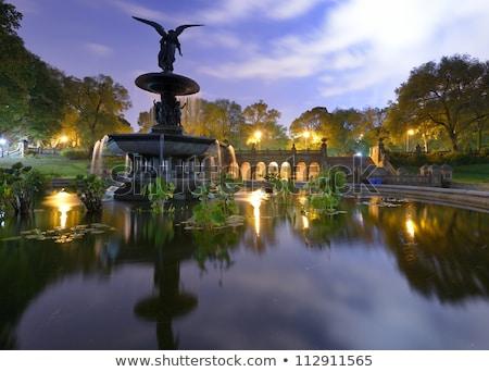 セントラル·パーク 天使 噴水 ニューヨーク テラス 太陽 ストックフォト © lunamarina