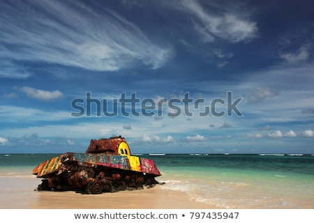 Flamenco tengerpart hadsereg tank közelkép öreg Stock fotó © ArenaCreative