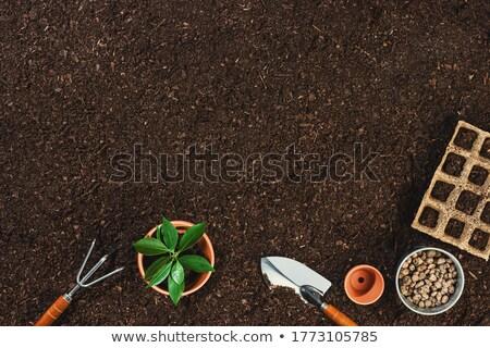 Gleby dziewczyna przygotowanie wiosną pracy Zdjęcia stock © FOTOYOU