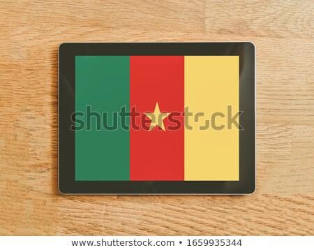 Comprimido Camarões bandeira imagem prestados Foto stock © tang90246