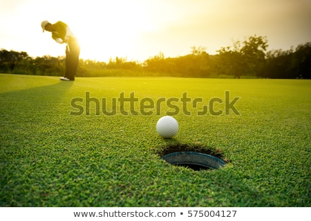 golf ball and hole on the green grass of the golf course Stock photo © tetkoren