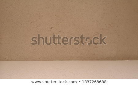 Gray Square  Pavement with the Effect of Marble. Stock photo © tashatuvango