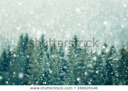 fairy light in the mountains stock photo © kotenko