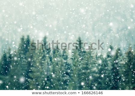 Fairy light in the mountains Stock photo © Kotenko