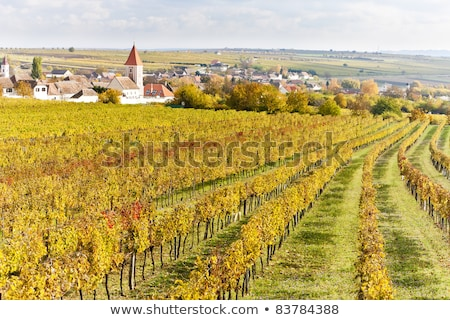 retz lower austria austria stock photo © phbcz