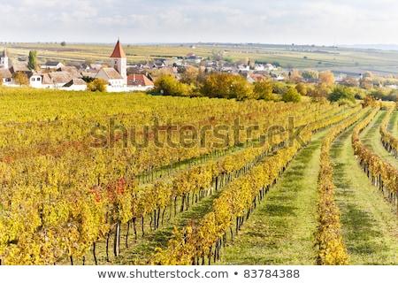 Retz, Lower Austria, Austria Stock photo © phbcz