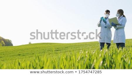 Női gazda búzamező kéz megérint gabonapehely Stock fotó © stevanovicigor