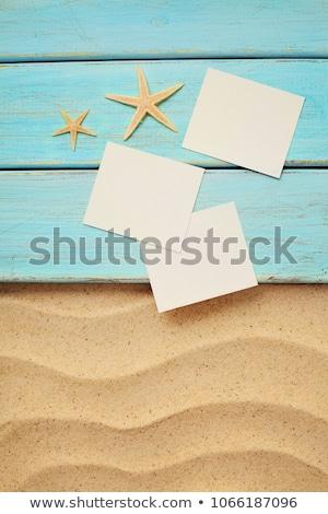 Polaroid foto quadro viajar férias de verão praia Foto stock © robuart
