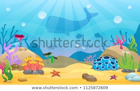 Natureza cena baleia mar ilustração fundo Foto stock © bluering