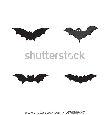 halloween · vámpír · denevér · rajzfilmfigura · felirat · aranyos - stock fotó © vectorworks51