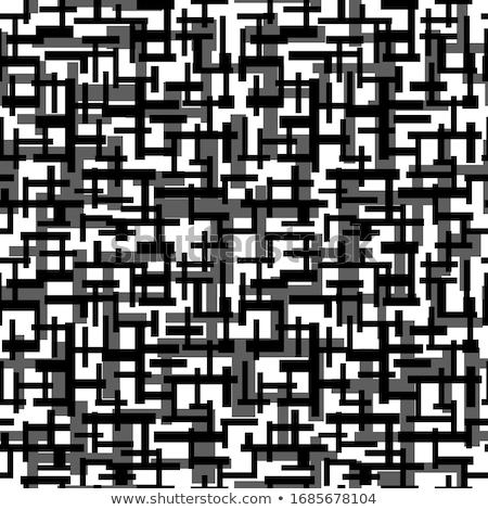 vektör · siyah · beyaz · diyagonal · labirent · hatları - stok fotoğraf © creatorsclub