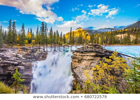 Athabasca Falls in Jasper National Park Stock photo © pictureguy