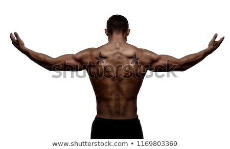 Férfi karok sziluett izmos test kaukázusi brutális Stock fotó © iordani