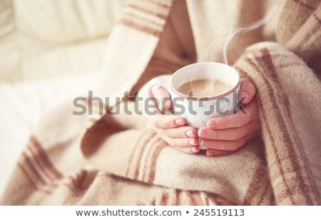 marshmallow · estrela · anis · confortável · inverno · casa - foto stock © manera