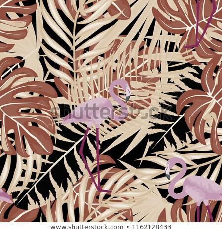 Roze flamingo zomer tropische oneindig Stockfoto © lucia_fox