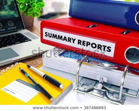 summary reports on red ring binder blurred toned image stock photo © tashatuvango