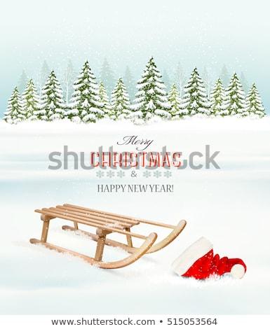 Wooden sledge in winter snow Stock photo © stevanovicigor