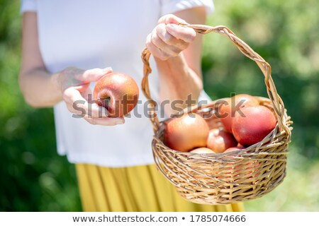 People looking at apple basket Stock photo © IS2
