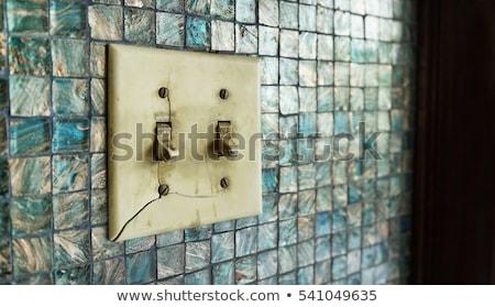 古い 壊れた 光スイッチ クローズアップ 画像 家 ストックフォト © elwynn